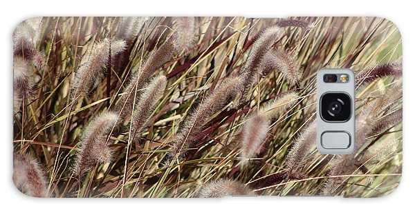 Dried Grasses In Burgundy And Toasted Wheat Galaxy Case