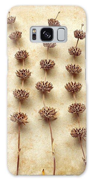 Dried Sage Galaxy Case