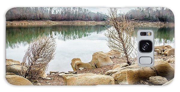 Dried Shrubs At Cherokee Reservoir Galaxy Case