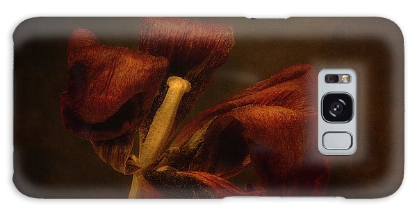 Tulip Galaxy S8 Case - Dried Tulip Blossom 2 by Scott Norris