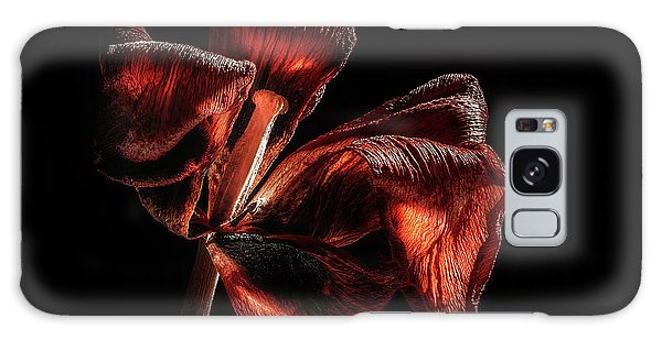 Tulips Galaxy Case - Dried Tulip Blossom by Scott Norris