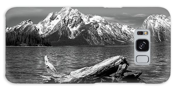 driftwood and Mt. Moran Galaxy Case