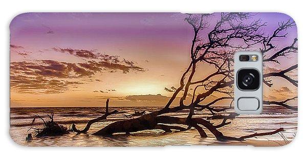 Driftwood Beach 2 Galaxy Case