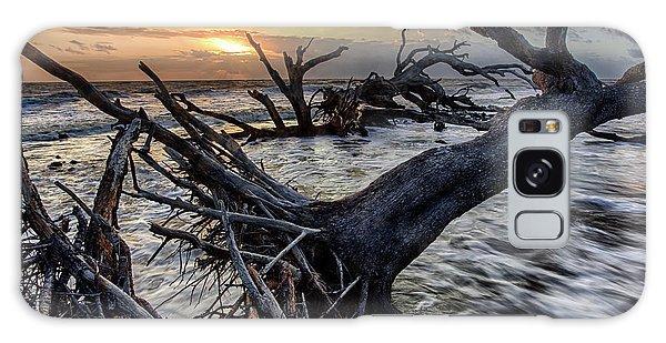 Driftwood Beach 4 Galaxy Case