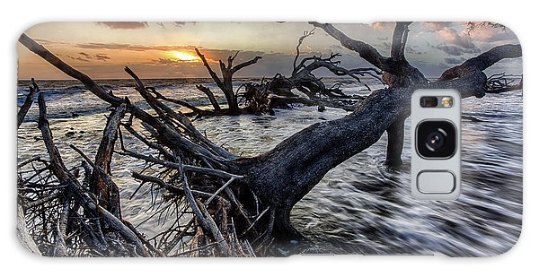 Driftwood Beach 5 Galaxy Case
