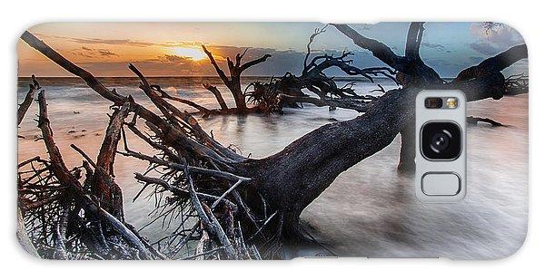 Driftwood Beach 6 Galaxy Case