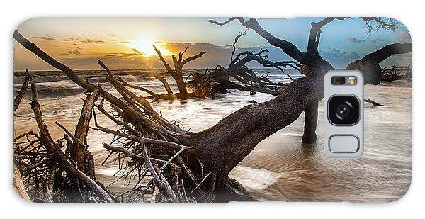 Driftwood Beach 7 Galaxy Case