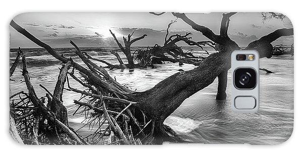 Driftwood Beach 8 Galaxy Case