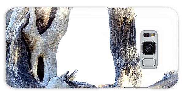 Driftwood Galaxy Case