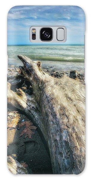 Driftwood On Beach - Grant Park - Lake Michigan Shoreline Galaxy Case by Jennifer Rondinelli Reilly - Fine Art Photography