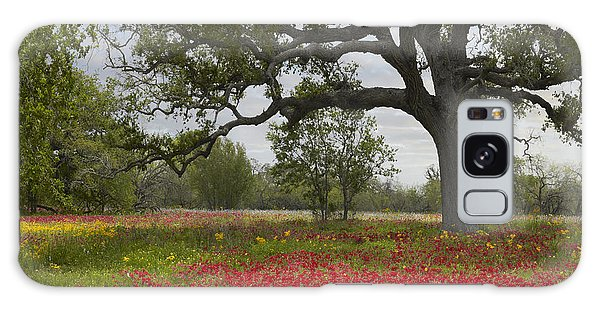 Galaxy Case featuring the photograph Drummonds Phlox Meadow Near Leming Texas by Tim Fitzharris