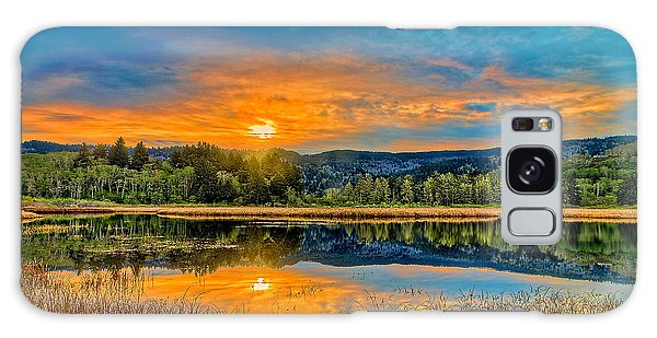 Dry Lagoon Spring Morning Galaxy Case
