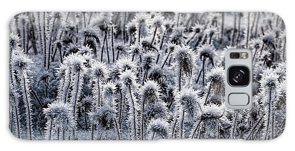 Galaxy Case featuring the photograph Dryas Frost by Fred Denner