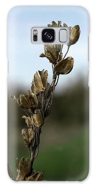 Drying Flower Galaxy Case