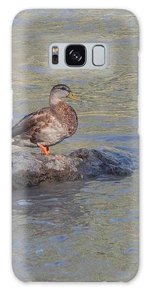 Duck Alone On The Rock Galaxy Case