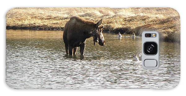 Ducks - Moose Rollinsville Co Galaxy Case