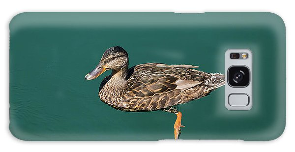 Galaxy Case featuring the photograph Duck Floats by Davor Zerjav