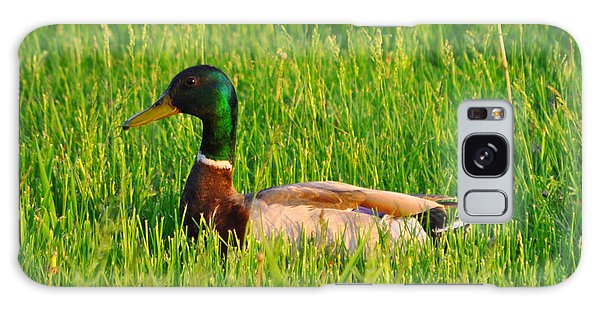 Duck In The Grass Galaxy Case