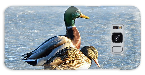 Duck Pair On Frozen Lake Galaxy Case