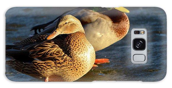 Duck Pair Sunbathing On Frozen Lake Galaxy Case