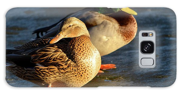 Duck Pair Sunbathing On Frozen Lake Galaxy Case