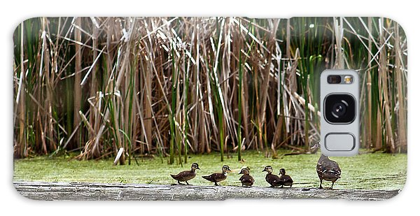 Ducks All In A Row Galaxy Case