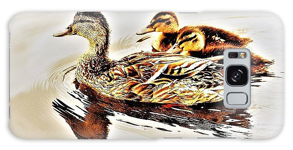 Ducks Galaxy Case