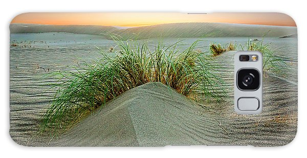 Dune Grass Of Bruneau Idaho Galaxy Case
