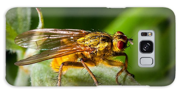 Dung Fly On Leaf Galaxy Case
