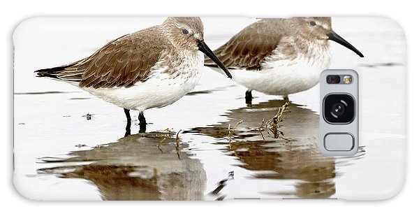 Dunlin Seeing Double Galaxy Case