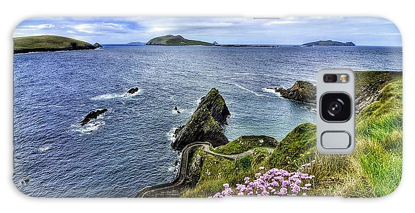Dunquin Flowers  Galaxy Case
