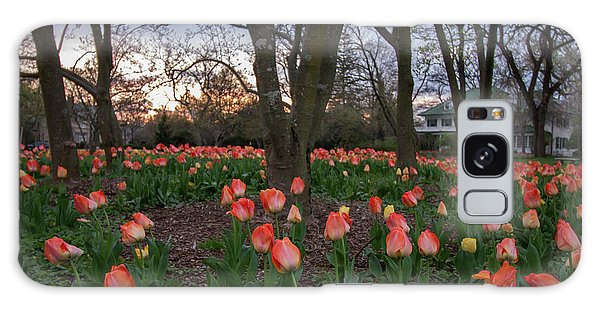 Galaxy Case featuring the photograph Dusk At Sherwood Gardens by Chris Scroggins