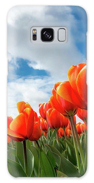 Dutch Tulips Near Keukenhof Galaxy Case