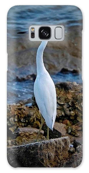 Eager Egret Galaxy Case by DigiArt Diaries by Vicky B Fuller