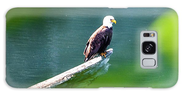 Eagle In Lake Galaxy Case