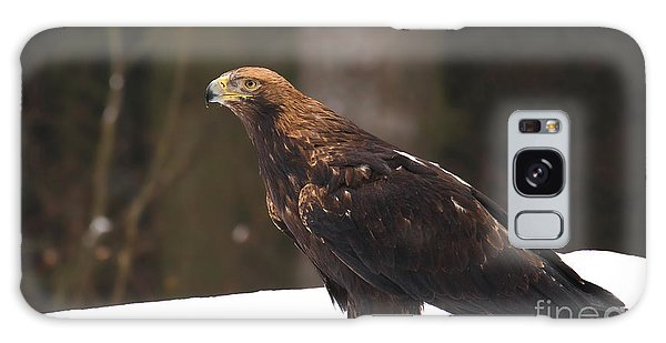 Eagle In The Snow Galaxy Case