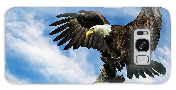 Eagle Landing On A Branch Galaxy Case