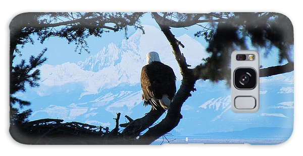 Eagle - Mt Baker - Eagles Nest Galaxy Case