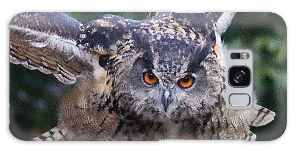 Eagle Owl Close Up Galaxy Case
