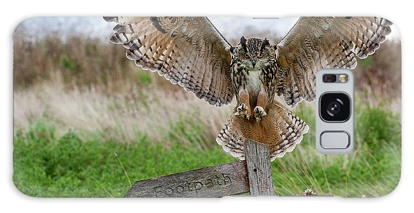 Eagle Owl On Signpost Galaxy Case
