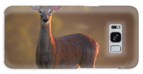 White-tailed Deer Galaxy Case - Early Buck by Bill Wakeley