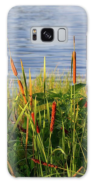 Early Morning Cattails Galaxy Case