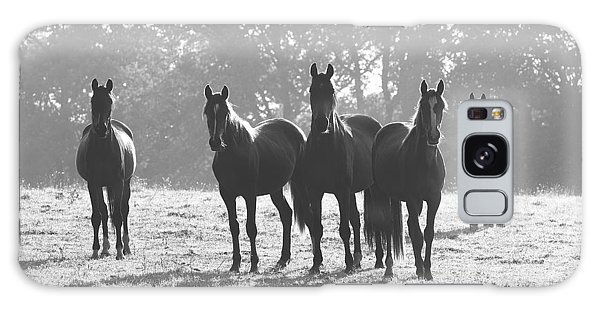 Early Morning Horses Galaxy Case