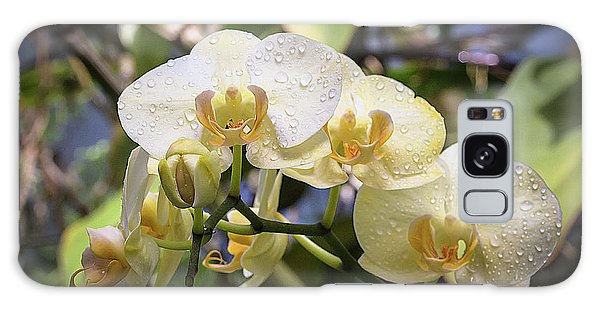Early Morning Orchids Galaxy Case