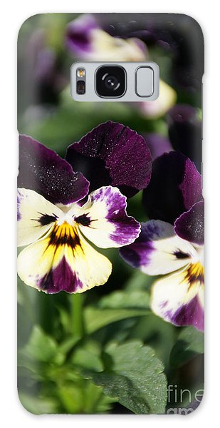 Early Morning Pansies Galaxy Case by Andrea Jean
