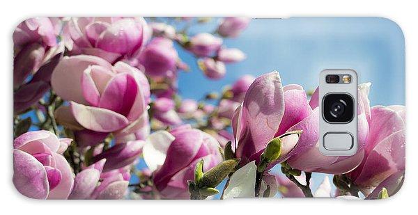 Early Spring Magnolia Galaxy Case