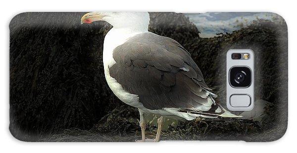 East Coast Herring Seagull Galaxy Case by Marcia Lee Jones