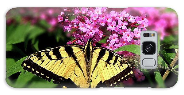 Eastern Tiger Swallowtail Butterfly Galaxy Case