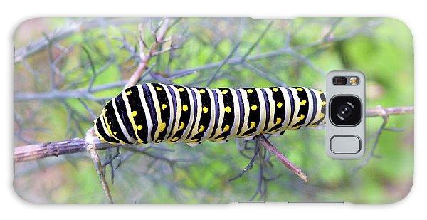 Eastern Black Swallowtail Caterpillar  Galaxy Case