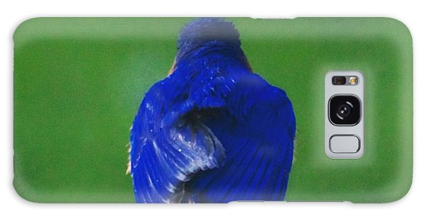 Eastern Bluebird. #birds #birding Galaxy Case